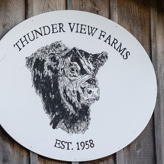 Thunderview