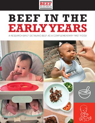 Beef in the Early Years - Research Brief