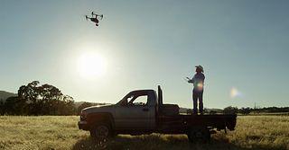 Raising Beef Drone