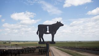 Triple-U Ranch