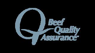BQA Web Logo