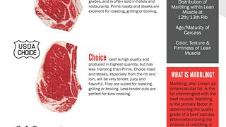 USDA Understanding Beef Quality Grades