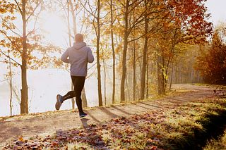 Runner on a path in the woods