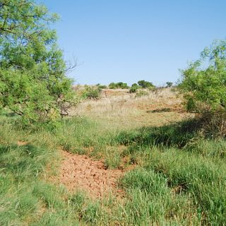 Bradley Ranch