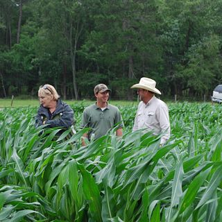 Greenview Farms, Inc.