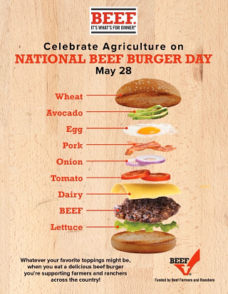 National Burger Day Infographic