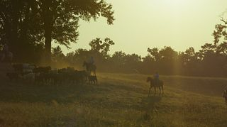 BQA - Bluff Creek Cattle