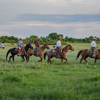 Turkey Track Ranch