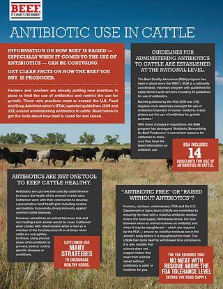 Antibiotic Fact Sheet