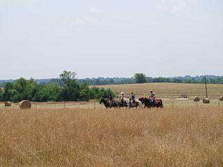 Dee River Ranch