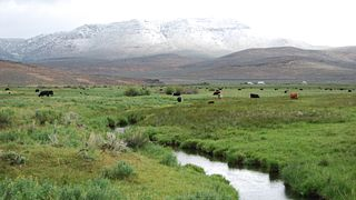 ESAP 2007-Region 5  land 2