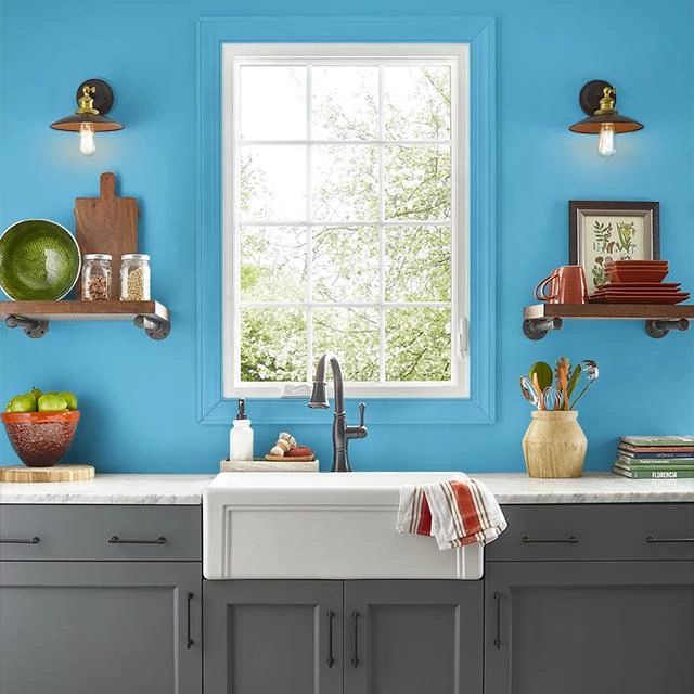 Kitchen painted in OVERBOARD