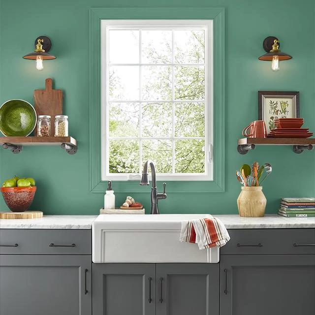 Kitchen painted in FOREST FOUND