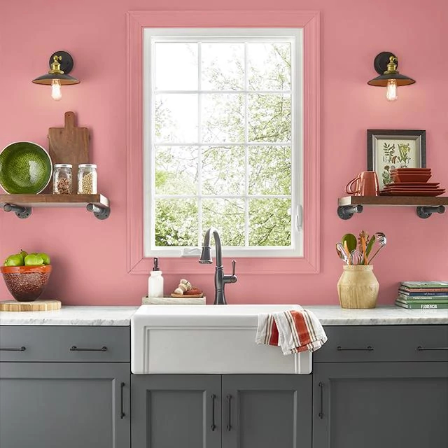 Kitchen painted in COOL WATERMELON