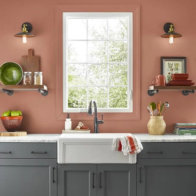 Kitchen painted in SPICY TWIST