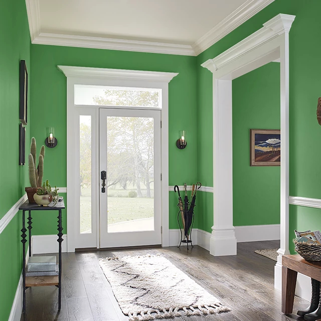 Foyer painted in WATERED GRASS
