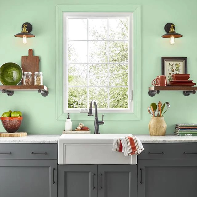 Kitchen painted in POLISHED JADE