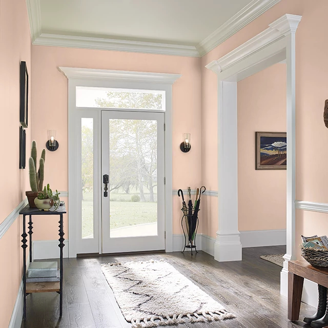 Foyer painted in TEA ROOM