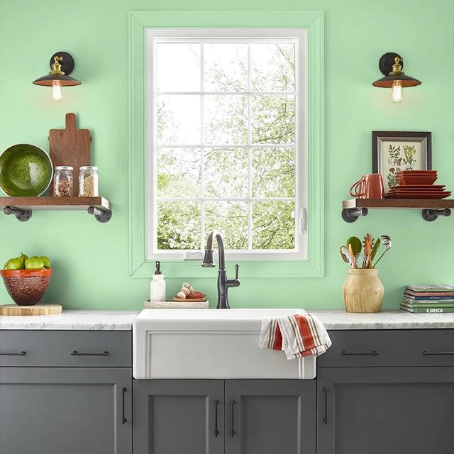 Kitchen painted in APPLE MARTINI