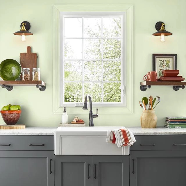 Kitchen painted in BIRDCAGE