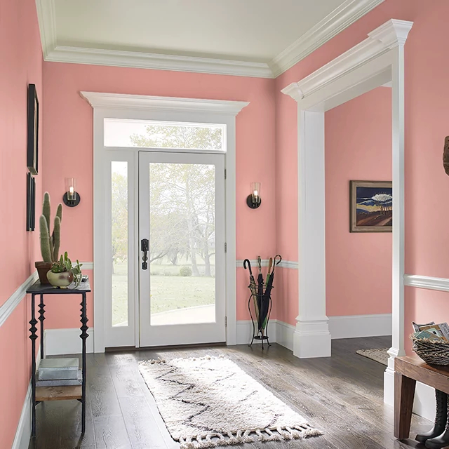 Foyer painted in CORAL RIDGE