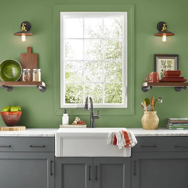 Kitchen painted in PLANT STEM