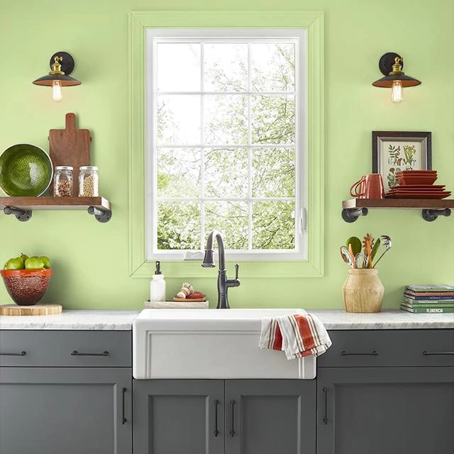 Kitchen painted in TREE LINE