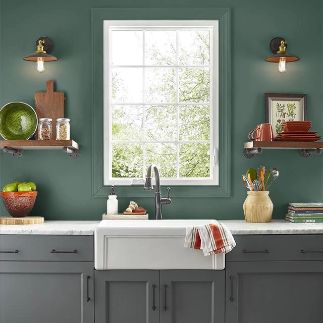 Kitchen painted in DEEP SPRUCE