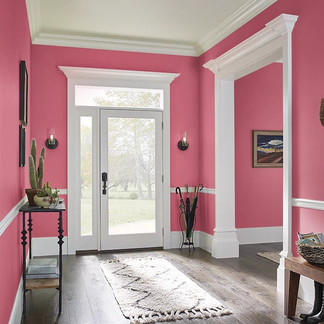 Foyer painted in IBIS PINK