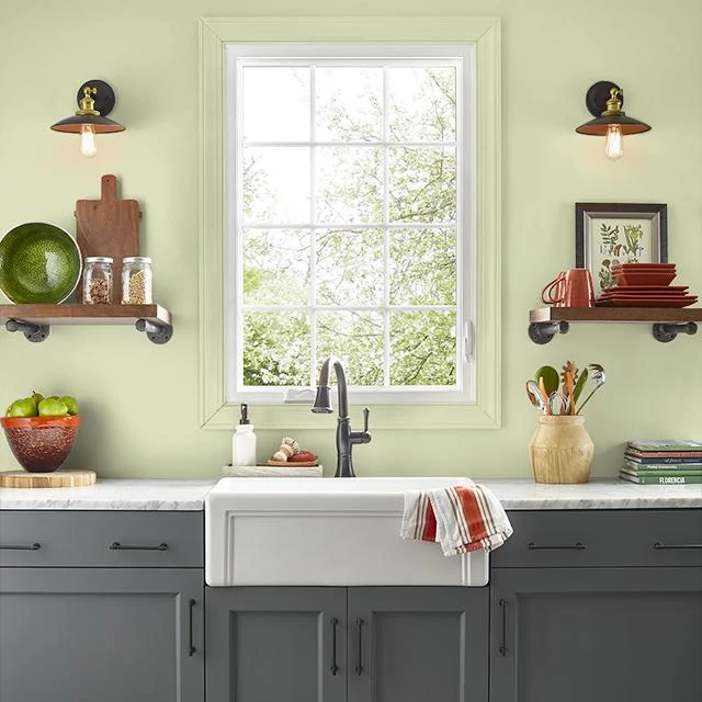 Kitchen painted in CELERY STICK