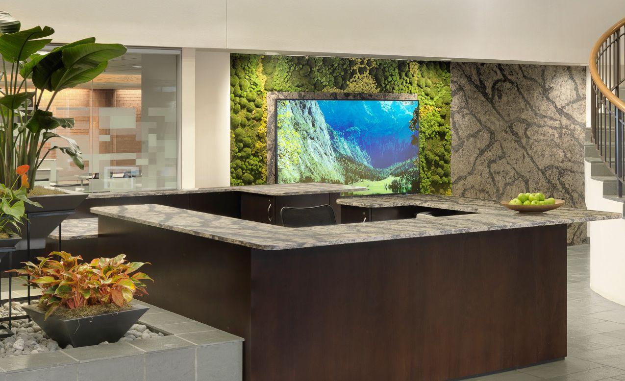 Bold Cambria Langdon fitness center reception desk and accent wall.