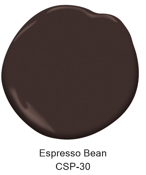 Paint Color- Espresso Bean CSP-30