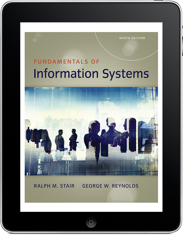 Fundamentals of Information Systems, 9e