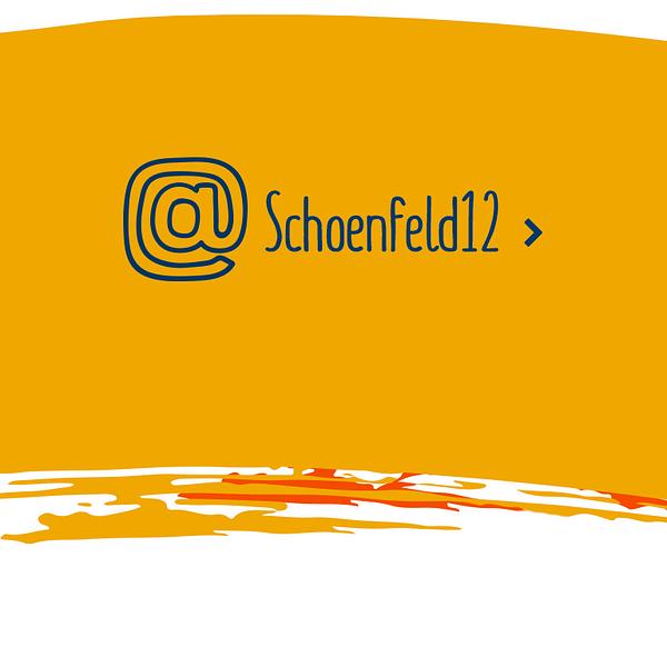 Schoenfeld12