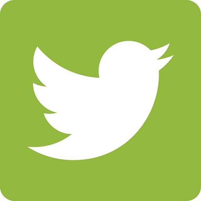 grn_twitter_icon