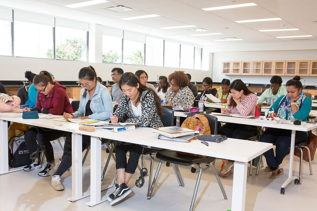 Picture of Centennial College IELTS students