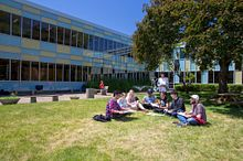 picture of Centennial College students studying outside as a group on a sunny day