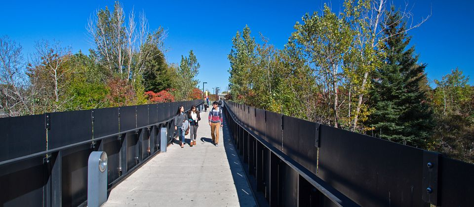 picture of Led young College students walking across the Morningside Campus bridge