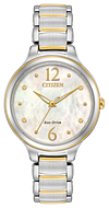 Citizen L main view