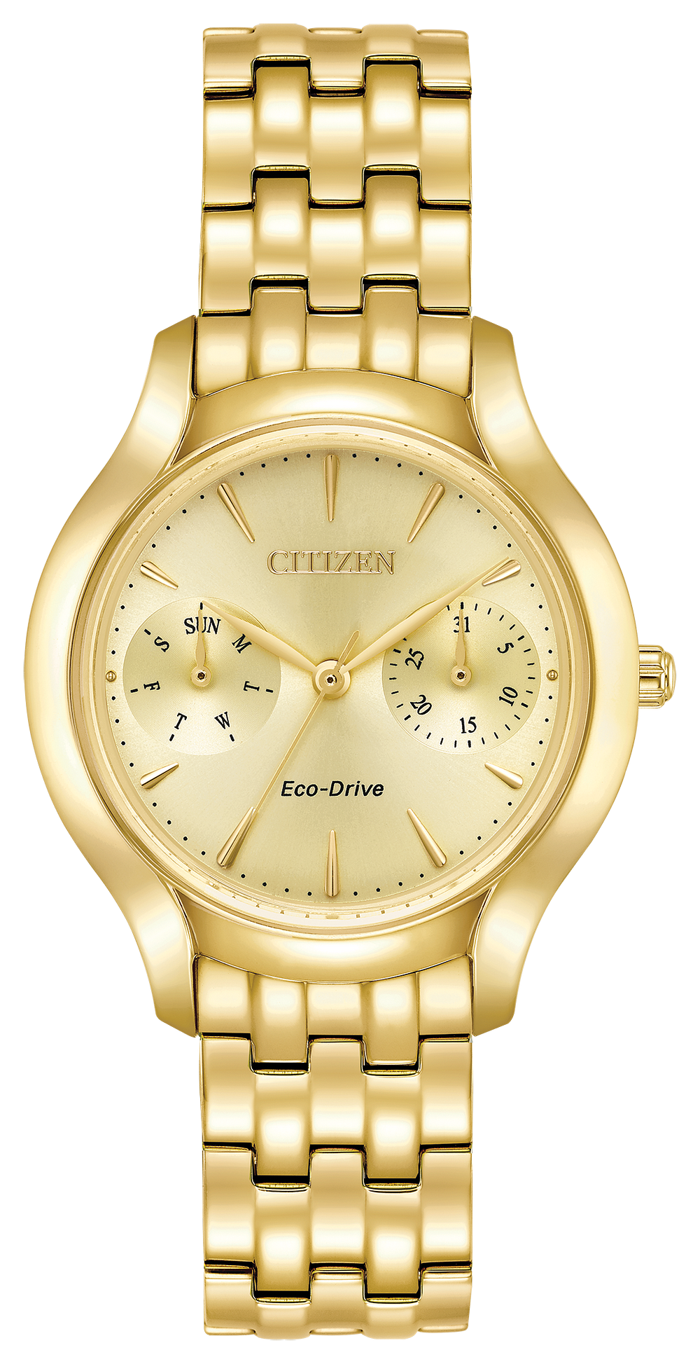 Chandler Ladies Eco Drive Gold Tone Stainless Steel