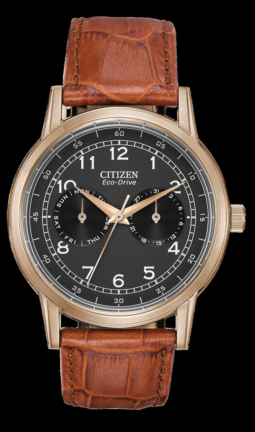 62ca83018 Corso - Men's Eco-Drive AO9003-08E Gold Case Brown Band Watch | Citizen