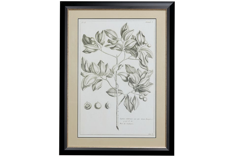 Meadow Gray Framed Wall Art