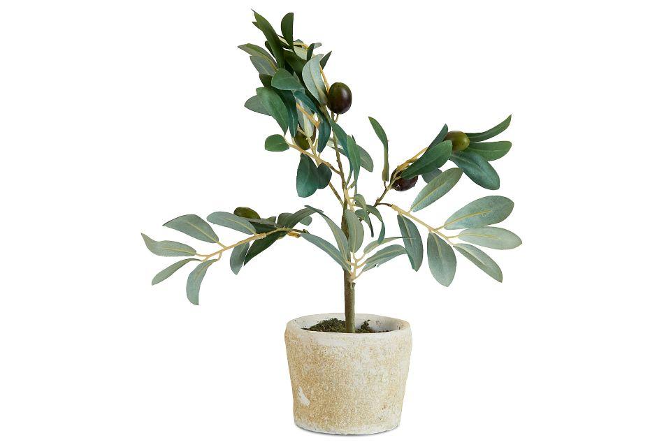 """Jolly 12"""" Olive Tree"""