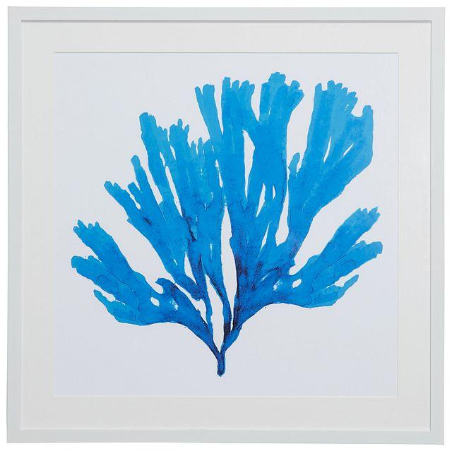 Coralcay Blue Framed Wall Art (0)