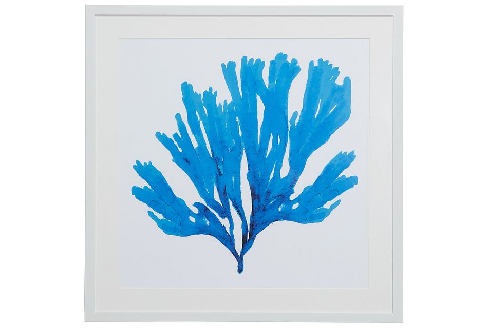 Coralcay Blue Framed Wall Art