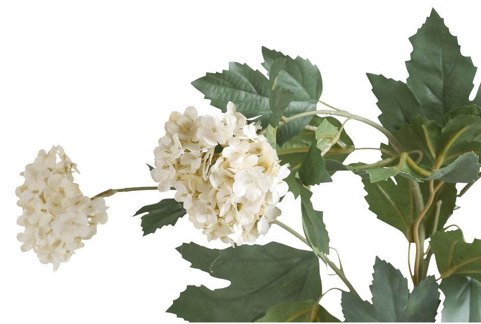 Aspen Branch,  (2)