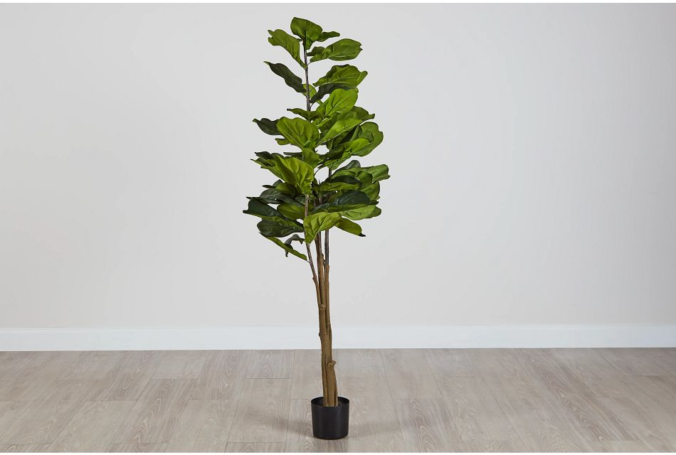 Maeve 6.5' Fiddle Fig Tree