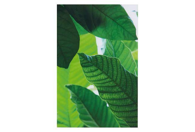 Kenduri Green Acrylic Wall Art