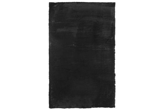 Kaycee Black 4x6 Area Rug