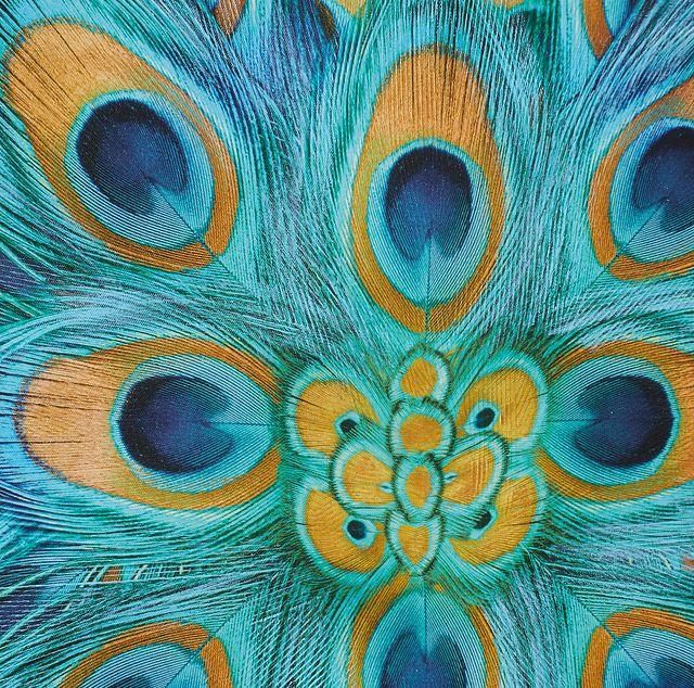 Camryn Blue Canvas Wall Art